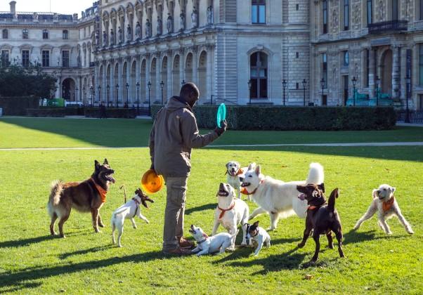 Dogwalker in Paris © Michael Kneffel
