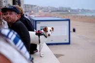 auch für Hunde interessant © Michael Kneffel