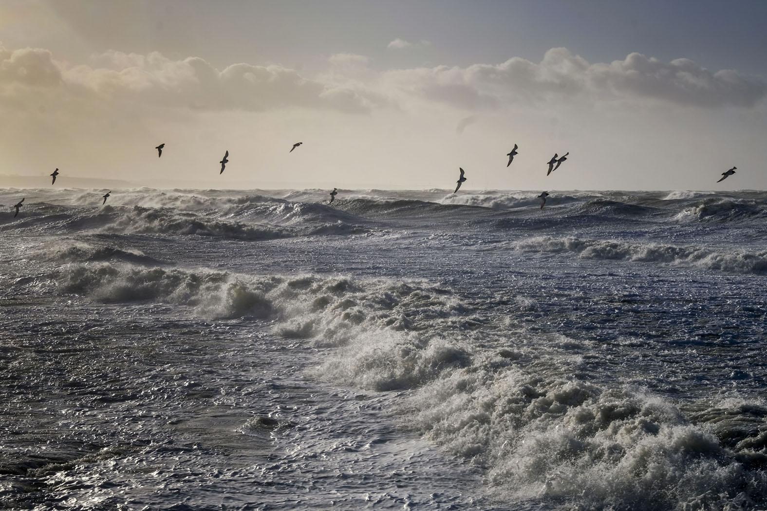 Sturm vor Audresselles © Michael Kneffel